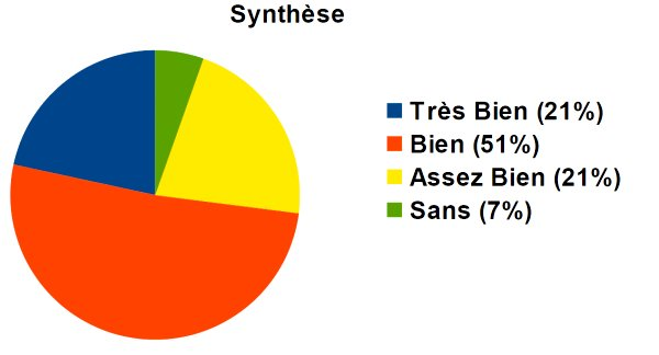 synthese mentions promos2012et2013